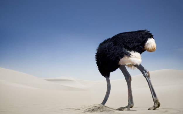 This image has an empty alt attribute; its file name is ostrich-head-in-sand-1.jpg